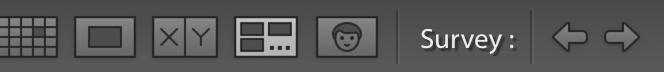 Survey View button on Lightroom