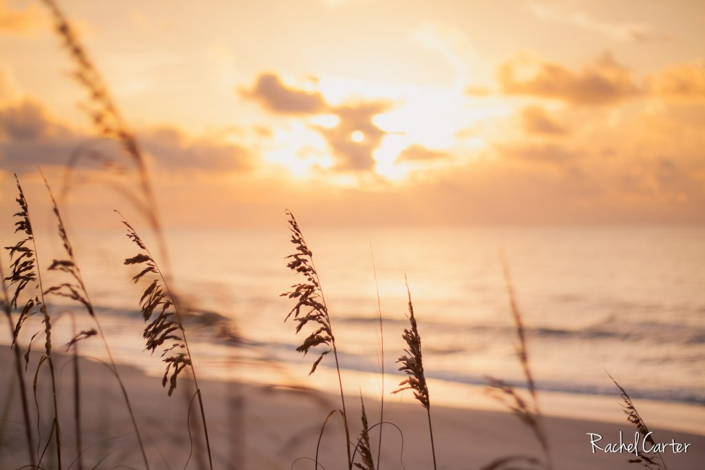 Sunrise in Surf City, NC, taken by Rachel Carter Images with a Canon EF 50mm f/1.8 STM Lens